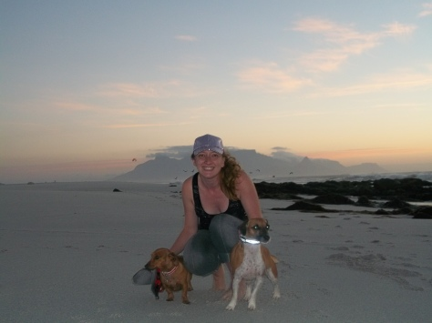 My happy place - on the beach, at sunset, with doggies. Check.