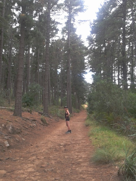 Setting off on a different hike - this one's in the Newlands Forest