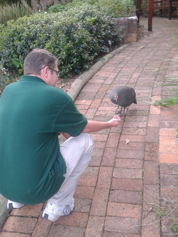 Saying hi to one of the very friendly guinea fowl wondering the grounds