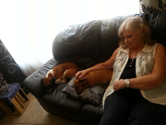 Puppies having a nap with granny, all tuckered out after Christmas lunch
