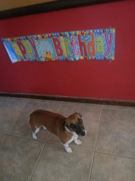 Birthday boy looking a little sad in front of his birthday sign