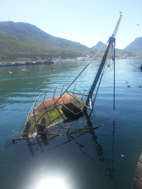Another mossy, sunken ship effort in Hout Bay harbour
