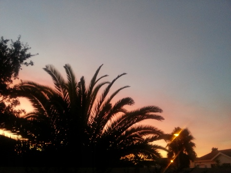 Weekend sunset - took the photo a little later than I should have. Still pretty.