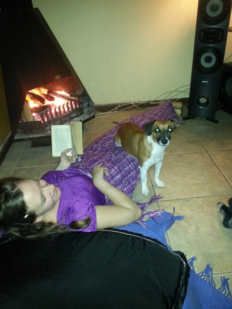 Note how Bertie is sitting on me, to warm his bum by the fire
