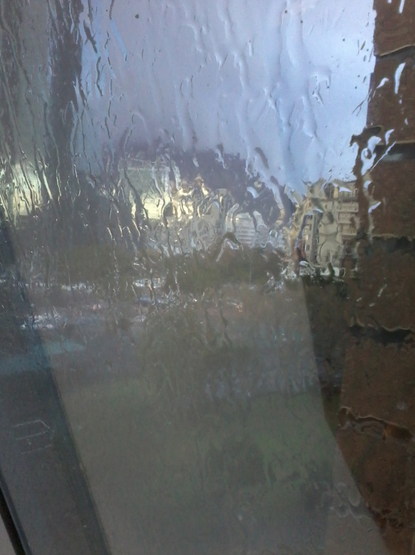View completely morphed by rain
