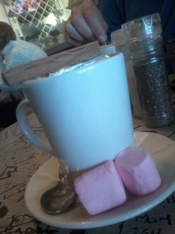 Look at THAT for a hot chocolate! This is how it's done at Petit Fours in Blouberg - cream and Flake on top, with two marshmallows on the side. You can do what you want with them - I elected to dunk them into the mug so they mushed into pink fizz.