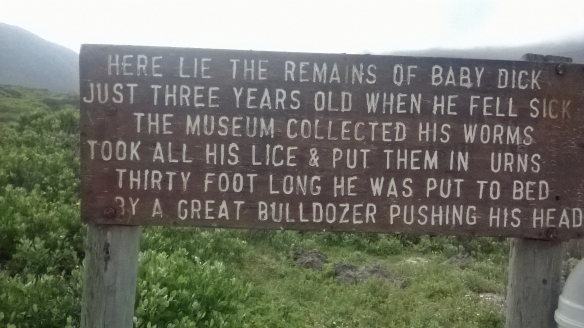 Interesting sign by one of the walkways in Hermanus