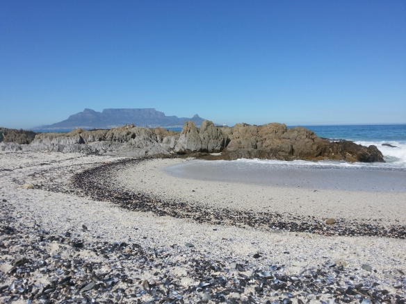 Blouberg beach was deserted on Saturday morning, despite beautiful weather conditions. We soon found out why...