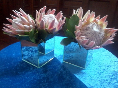 More proteas as decor, this time in mirrored vases