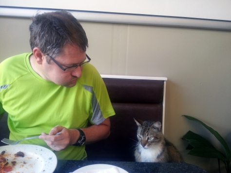 While breakfasting at McPherson's garden centre, their resident cat hopped into our booth to watch