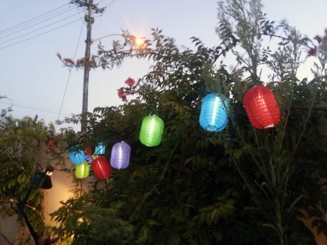 Loved the little garden lanterns