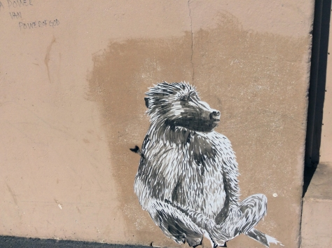 I couldn't resist stopping to snap this baboon painted onto a random wall in Woodstock on my way to an afternoon event. Must have looked like such a tourist.