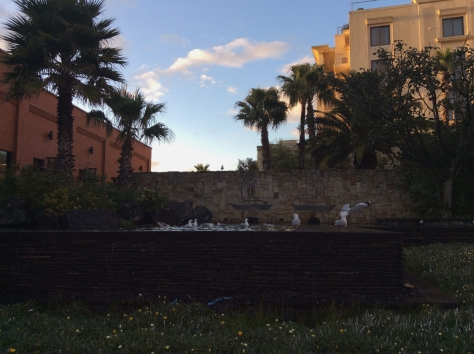 I attended a mobile/IT-type conference at the One & Only hotel on Wednesday. The weather was sunny and bright when I arrived - so much so that seagulls were frollicking in a water feature.