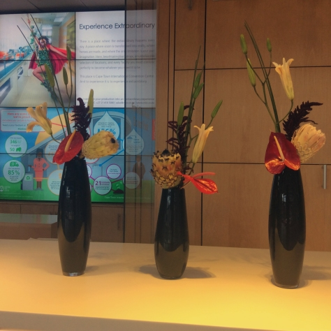 Another two-day conference at the IMC always starts with my 'which flowers are on display at the reception desk' shot.