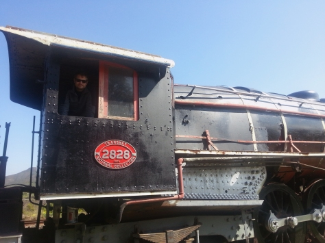 Of course we stopped off to explore some ancient trains when we were just outside Robertson. We climbed in, on and over them, as you can see...