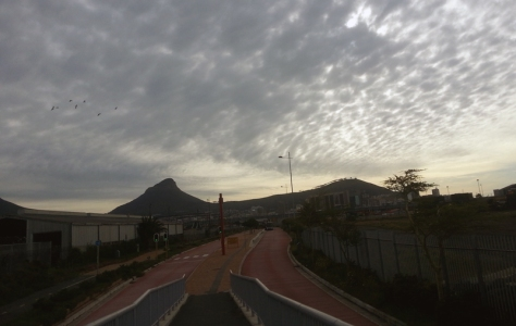 View on the walk to Woodstock MyCiti, with Lion's Head and Signal Hill.