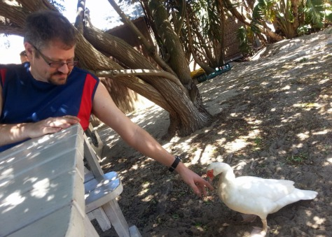 Greeting a duck at Driftwood Cafe